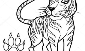 Charmant Patte De Tigre Dessin 93 sur Coloriage Pages for Patte De Tigre Dessin