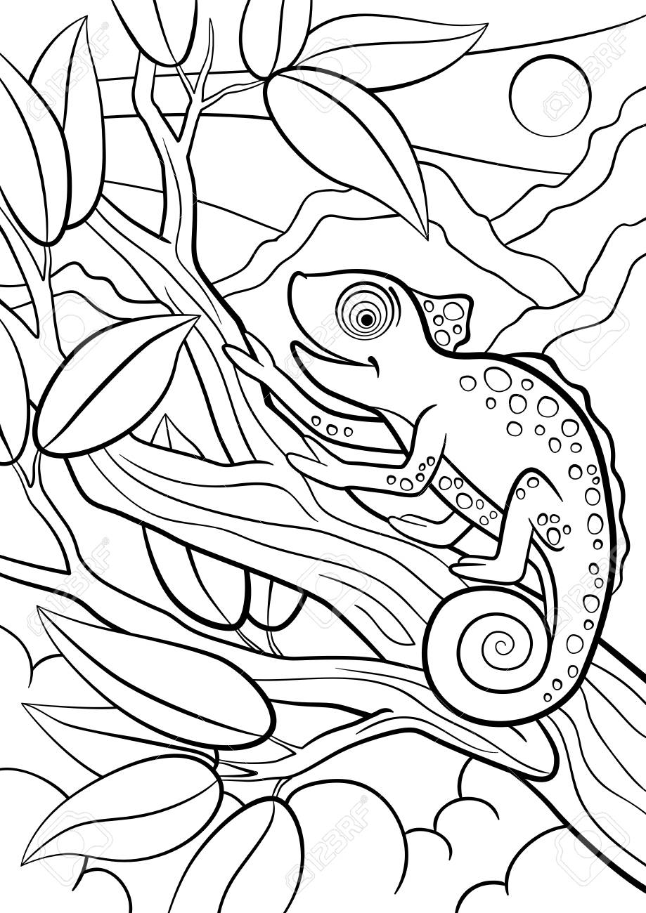 Cool Coloriage Animaux Sauvage 89 Pour Coloriage Books for Coloriage Animaux Sauvage