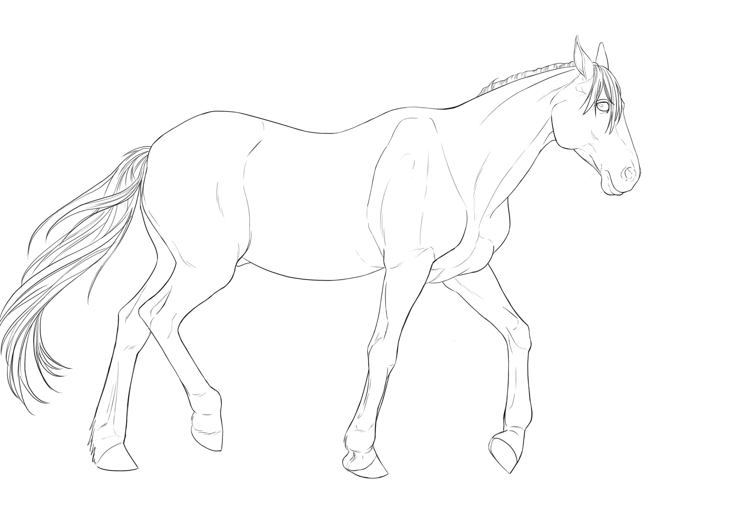 Cool Dessin Facile A Faire De Cheval 42 sur Coloriage Pages with Dessin Facile A Faire De Cheval