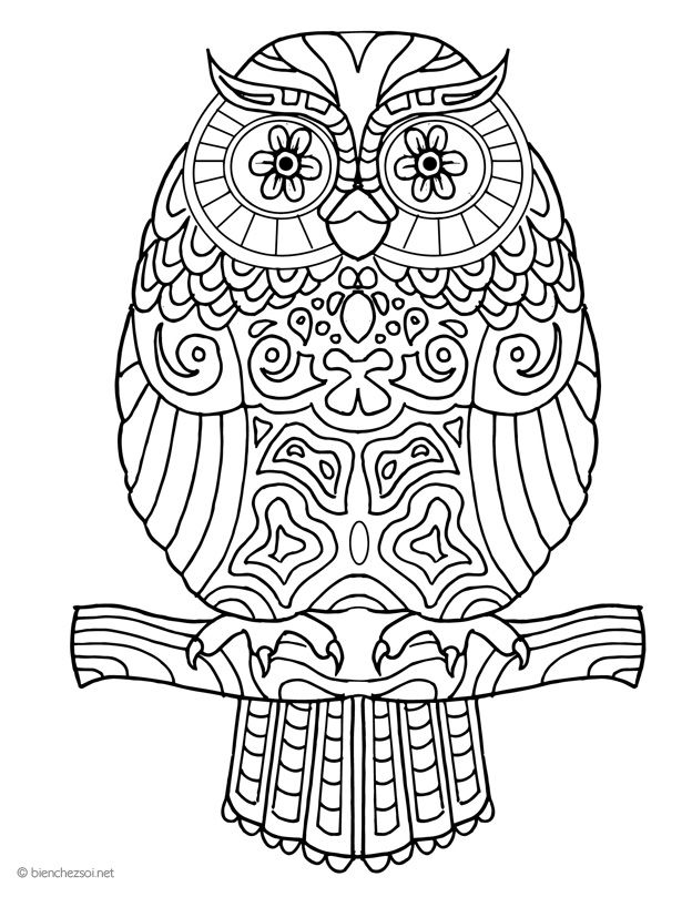 Excellent Coloriage Chouette Adulte 40 sur Coloriage Inspiration by Coloriage Chouette Adulte