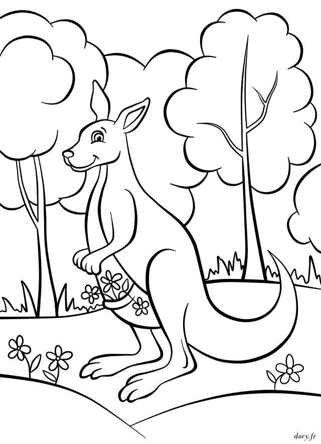 Excellent Coloriage Kangourou 92 Pour votre Coloriage Pages with Coloriage Kangourou