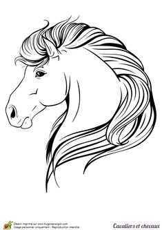 Excellent Tête De Cheval De Face Dessin 90 Dans Coloriage Books with Tête De Cheval De Face Dessin