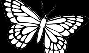 Facile Coloriage à Imprimer Papillon 79 sur Coloriage Books with Coloriage à Imprimer Papillon