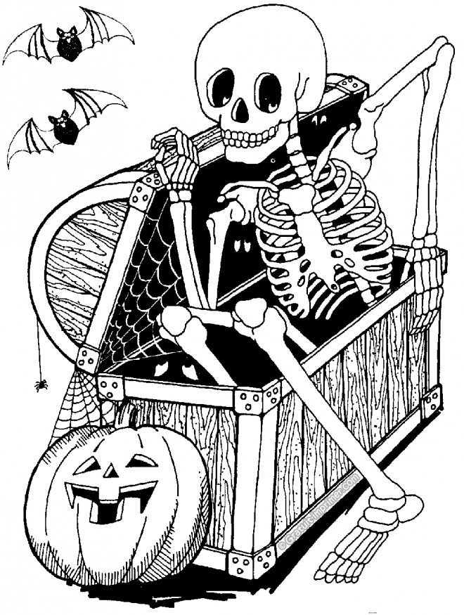 Facile Coloriage Squelette Pirate 53 Pour Coloriage idée by Coloriage Squelette Pirate