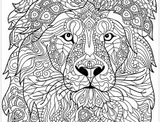 Facile Coloriage Tete De Lion 75 sur Coloriage idée for Coloriage Tete De Lion