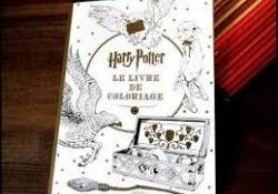 Facile Livre Coloriage Harry Potter 25 Pour Coloriage Inspiration for Livre Coloriage Harry Potter