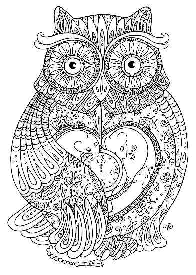 Génial Coloriage Chouette Adulte 45 sur Coloriage Pages for Coloriage Chouette Adulte