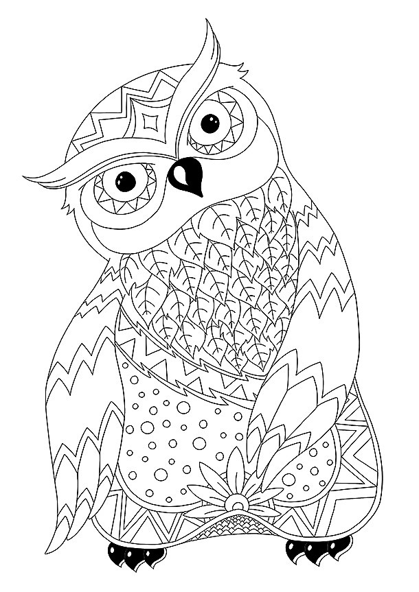 Génial Coloriage Chouette Adulte 95 Dans Coloriage Inspiration by Coloriage Chouette Adulte
