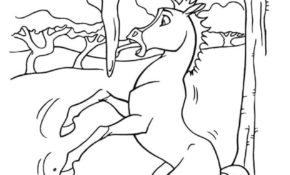 Génial Coloriage De Spirit 78 Pour Coloriage Inspiration with Coloriage De Spirit
