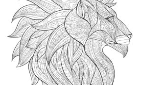 Génial Coloriage Tete De Lion 27 Dans Coloriage Pages by Coloriage Tete De Lion
