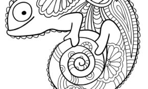 Génial Hugo Lescargot Coloriage 72 sur Coloriage Inspiration with Hugo Lescargot Coloriage