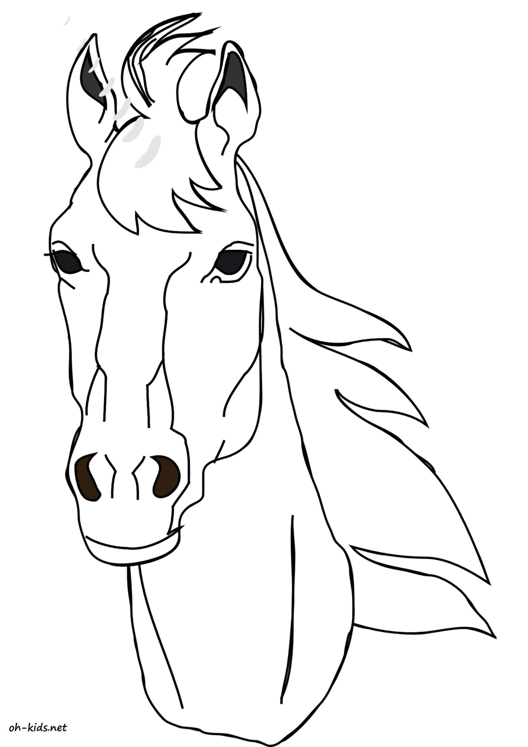 Haut Dessin Facile A Faire De Cheval 49 Dans Coloriage Pages for Dessin Facile A Faire De Cheval