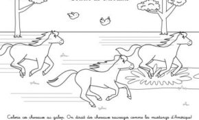 Impressionnant Coloriage Cheval Sauvage 44 Pour Coloriage Inspiration with Coloriage Cheval Sauvage