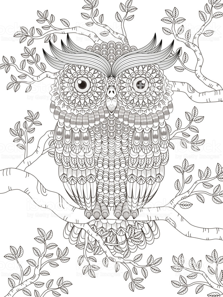 Meilleur Coloriage Chouette Adulte 14 Dans Coloriage Books with Coloriage Chouette Adulte